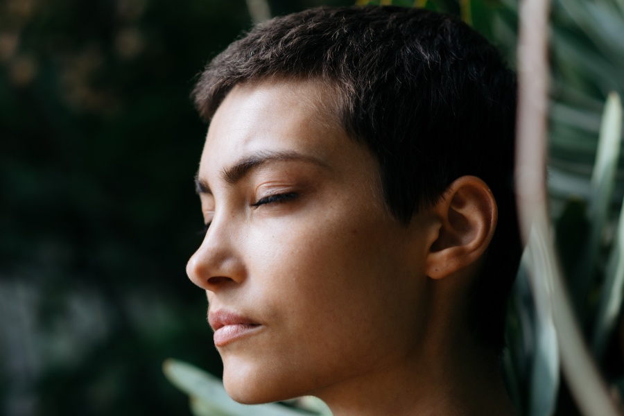 Understanding the Role of the Nervous System in your Healing Process